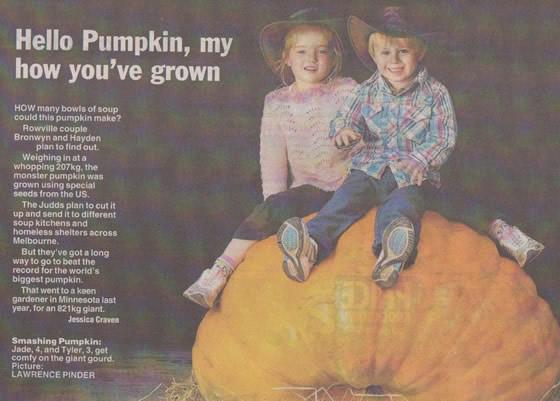 Giant-pumpkin-rowville