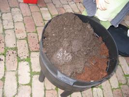 Adding-worms-to-farm