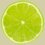 Lime_slice