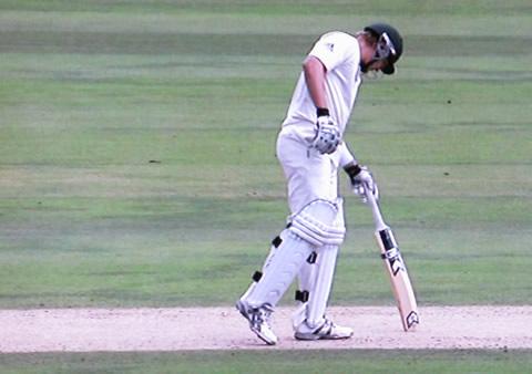 Cricket-pitch-gardening