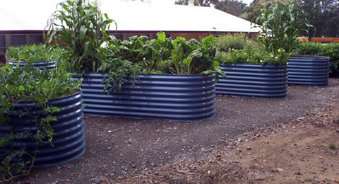 Bluescope-steel-raised-garden-beds
