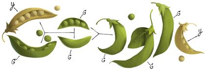 Google-peas