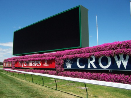Flemington-racecourse
