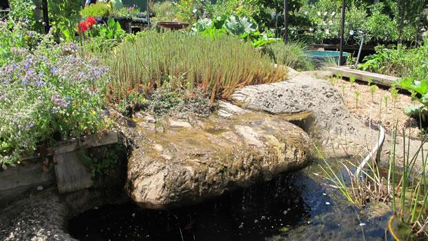 Mcgains-pond